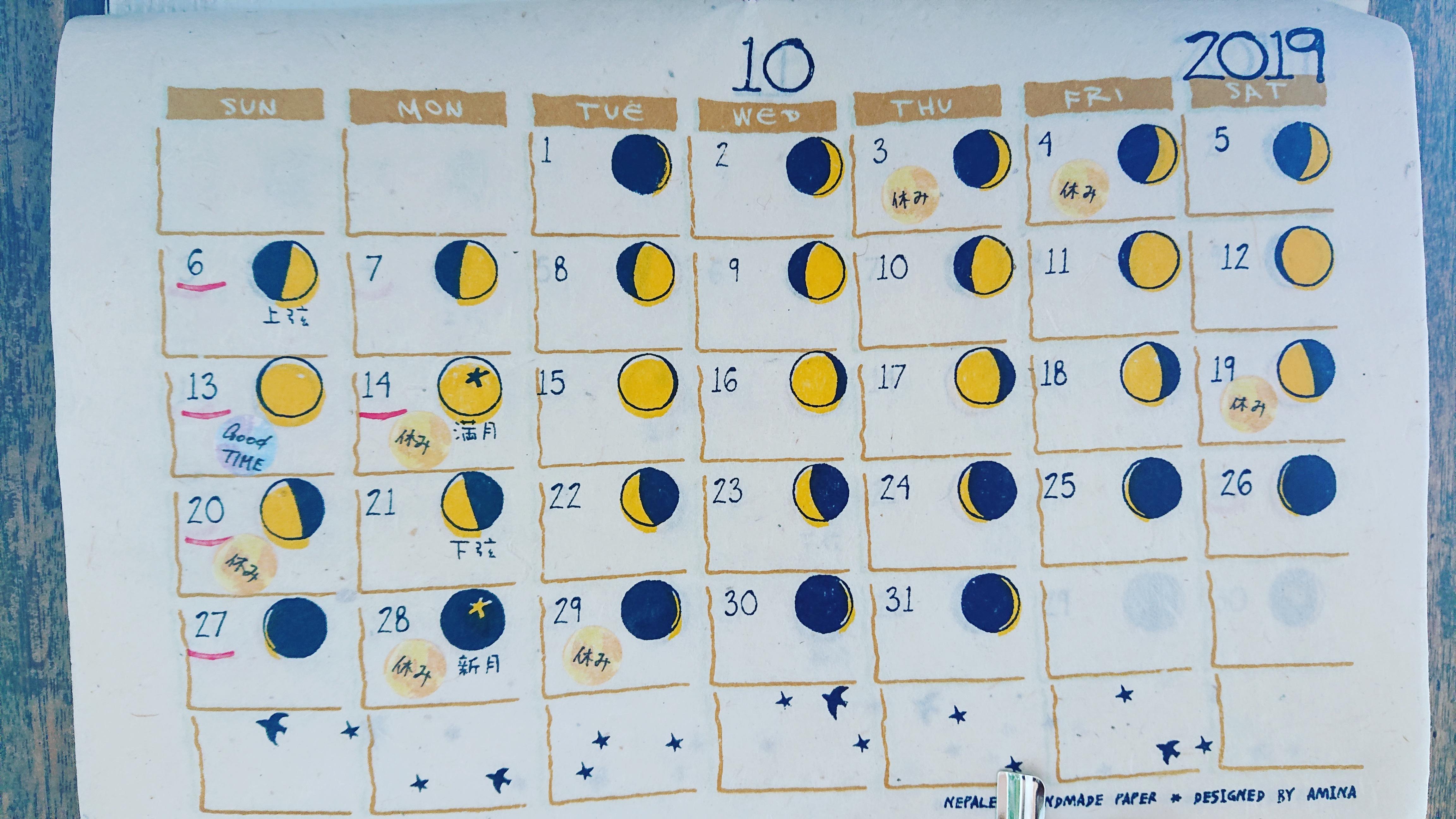 10月1日(火)本日のカレー4種